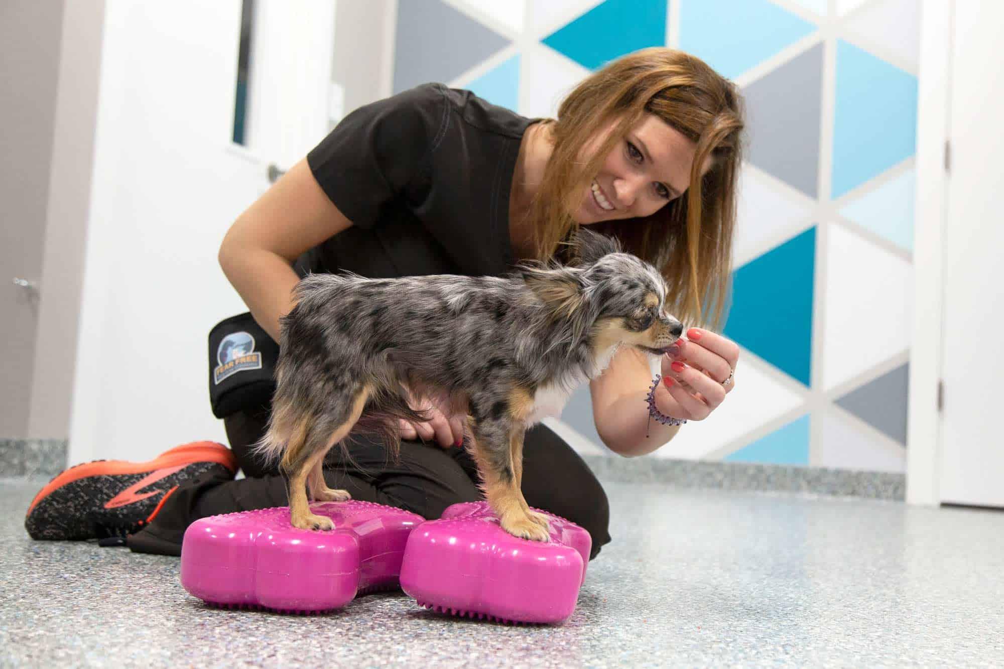 MARS Lauren giving pup treats.